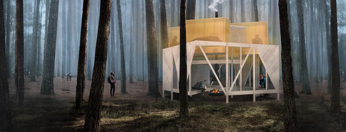 Large kuzman image1 forest final
